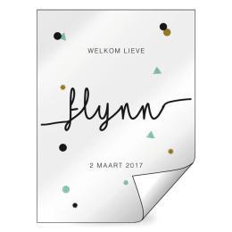Geboorte raamsticker Flynn