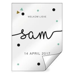 Geboorte raamsticker Sam