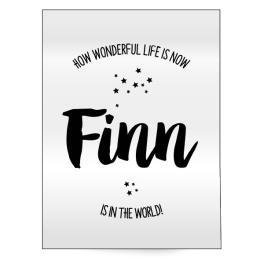 Geboorteposter Finn