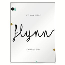 Geboorteposter Flynn